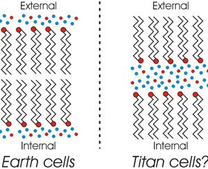 Bilayer membranes - Earth-standard and reversed