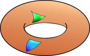Torus curvature
