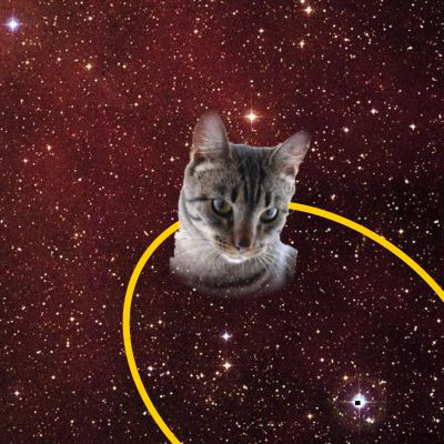Tabby in orbit