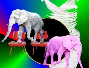 elephants and chairs